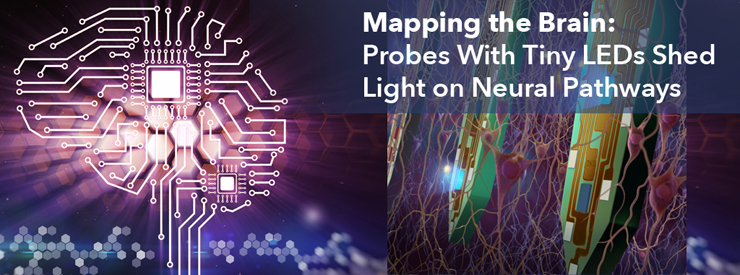 Mapping the Brain: Probes iwht Tiny LEDS Shed Light on Neural Pathways